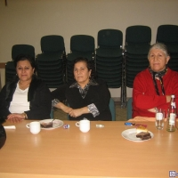 2008-01-15_-_Frauensitzung-0012