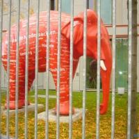 2008-12-11_-_Frauengruppen_in_Berlin-0019