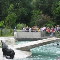 2009-06-12_-_Augsburger_Zoo-0006