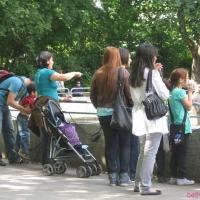 2009-06-12_-_Augsburger_Zoo-0030