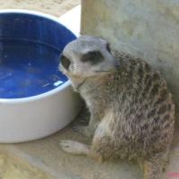 Ausflug zum Augsburger Zoo