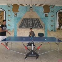 2009-07-19_-_Tischtennisturnier-0010
