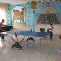 2009-07-19_-_Tischtennisturnier-0011