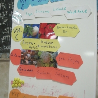 2011-12-13_-_Frauengruppe_Vortrag_Wechseljahre-0020