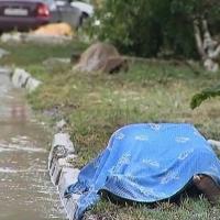 2012-07-13_-_Umweltkatastrophe_in_Krasnodar-0022