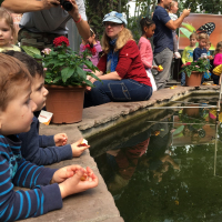 2019-03-28_-_Mutter-Kind-Gruppe_Botanischer_Garten-0003