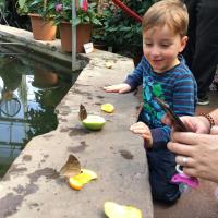 2019-03-28_-_Mutter-Kind-Gruppe_Botanischer_Garten-0029