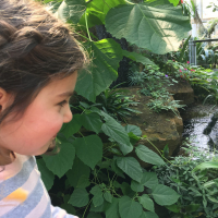 2019-03-28_-_Mutter-Kind-Gruppe_Botanischer_Garten-0031