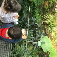 2019-03-28_-_Mutter-Kind-Gruppe_Botanischer_Garten-0033